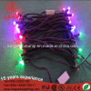 Clear Rubber Cable 24V Waterproof Light String Party Decoration