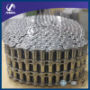 Roller Chain with Triplex (SS20B-3)