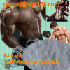 Human Growth Muscle Mass Bodybuilding Steroid Hormone Testosterone Propionate