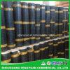 Sbs Building Waterproof Asphalt Plastic Roofing Felt Waterproof Membrane