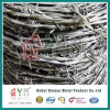 Hot Dipped Hot Dipped Barbe Wire / Galvanized Barbed Wire Prices