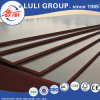 Film Faced Shuttering Plywood for Building / Formwork