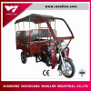 Factory Sale Water Cooled Modern Rackshaw Canvas Roof Motor Trike
