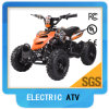 Electric ATV 36V 500W Brushed Motor for Kids Factory Directly (TBQ01)