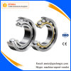 China Factory Supply Large Angular Contact Ball Bearing (7692)