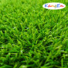 Dynamic Synthetic Grass for Backyard