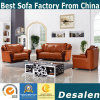 New Arrival Factory Wholesale Price Genuine Leather Sofa (A05)