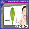 Indoor High Resolution P4.81 Full Color Stage Screen