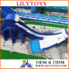 10% Discount for Water Park Use Different Theme Inflatable Big Water Slide, Inflatable Slide.