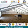 20X40m Big Marquee Tent for Horse Riding, Hockey, Skating, Tennis
