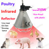 Infrared Heat Light Reflector Holder