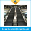 Superior China Top Supplier Passenger Indoor Public Automatic Escalator