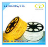 Ce RoHS Listed 220V IP65 LED Strip Light with SMD5050
