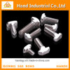 Stainless Steel Golden Supplier Ss 304 M2-M16 T Head Bolt