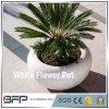 Polished White Stone Flower Pot/Vase for Garden Decoration/Landscape Project