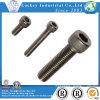 Stainless Steel Hex Socket Head Screw