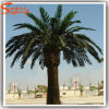 Customized Artificial Outdoor Decoration Palm Trees