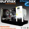 250kVA Perkins Diesel Generator Set (RM200P1)