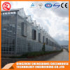 Agriculture Prefabricated One Stop Gardens Glass Greenhouse