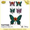 Temporary Body Tattoos for Women (JHXY-TT1606181)