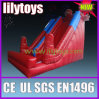 Inflatable Slide, Design Inflatable Slide From Lilytoys