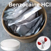 Local Anesthetical Apis Benzocaine HCl with Competitive Price