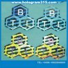 Innovative Design 3D Hologram Labels Printing (P-108)