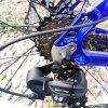 Trendy Design 36V 10.4ah Samsung Battery Mountain E-Bike