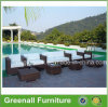 Rattan Wicker Used Hotel Pool Furniture