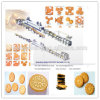 Medium Capacity Biscuit Making Machine/Biscuit Machine Made in China