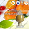 Natural and Orange Peel Extract 98% Hesperidin