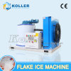 1ton/Day CE Approved Flake Ice Machine with Ice Storage Bin