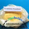 Trenbolone Enanthate Steroid Raw Powder 10161-33-8