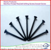 Dry Wall Screws Hardware Bugle Head Phillip Drywall Screw