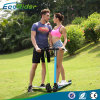 Ecorider Top Selling 350W 24V 2 Wheels Electric Scooter Carbon Fiber Folding Kick Scooter for Adults
