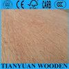 Bintangor Plywood / Okume Plywood/ Birch Plywood/Bb/Cc Plywood