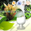 High Quality 100% Natural Costus Speciosus Extract--Protodioscin