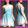 2015 New Popular Sweetheart Beautiful Printing Prom Dress Puffy in Summer (FDS003)
