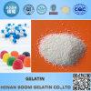 Pharmaceutial Grade Gelatin