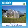 The Cheapest Mini Garden Greenhouse for Tomato