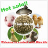 Fish Meal with Lowest Price for Animal Feed