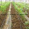 Drip Irrigation Hose for Farm Irrigation
