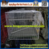 PVC Chicken Pigeon Rabbit Cage From Bingye