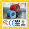 Pvdp Color Coated Steel Coils