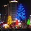 Beautiful LED Christmas Tree with Many Different Color Optional