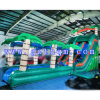 Backyard Kids Residential Inflatable Water Slide/Huge Bouncy Water Slide for Custom