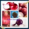 Allium Cepa Extract /Onion Extract