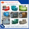Alternator Diesel Generator Copper Brushless Generator
