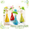 China Porcelain Reed Diffuser Gift Set Home Deco Air Fresh Gift
