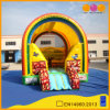 Rainbow Model Colorful Inflatable Bounce (AQ02267)